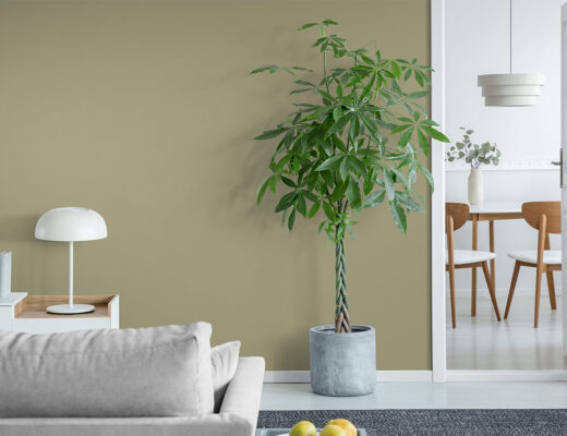 Kunst som passer til grønne veggfarger